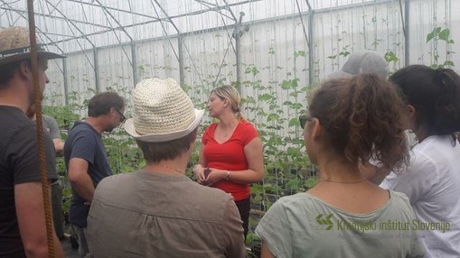 Dr. Barbara Pipan explaining how they breed common bean at AIS